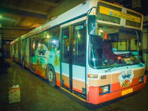 DSCN5411
